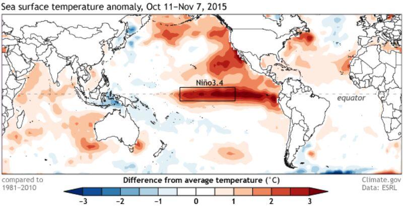 Odchylenie od średniej temperatury Pacyfiku w okresie od 11 października do 7 listopada