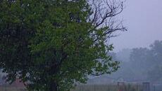 Deszczowy poniedziałek na Waszych zdjęciach (Kontakt 24)