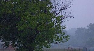 Deszczowe dni na Waszych zdjęciach (Kontakt Meteo)