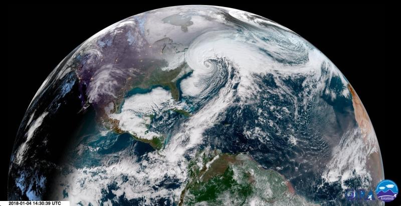 Wir polarny na zdjęciu satelitarnym